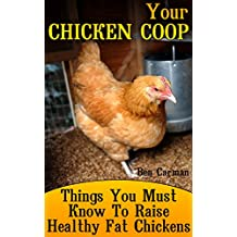 Your Chicken Coop: Things You Must Know To Raise Healthy Fat Chickens