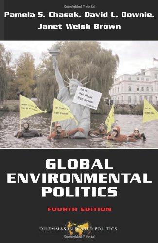 Global Environmental Politics (Dilemmas in World Politics)