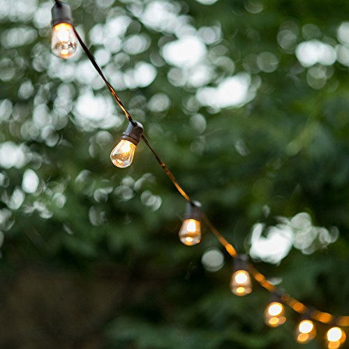 Outdoor Reception Lighting Ideas in US - 8