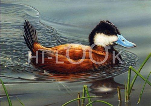 Hi-Look Microfiber Cleaning Cloth - Ruddy Duck