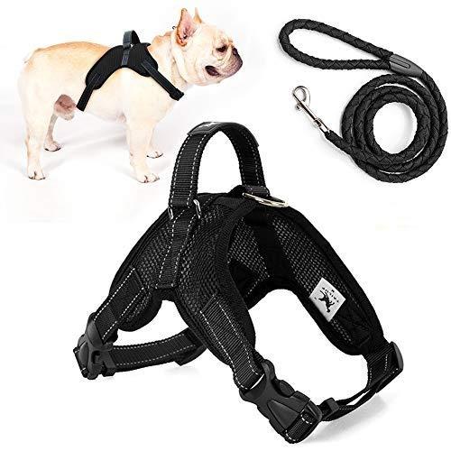 🥇 Productos para mascotas con chiusura della pettorina bottone di sicurezza che quasi impossibile che qualche