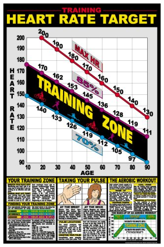AmazonCom  Heart Rate Chart  X  Laminated Chart  Fitness