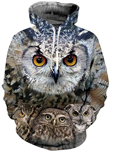 RAISEVERN Mens 3D Printed 80s Pullover Long Sleeve Personalized Fleece Hooded Sweatshirts,2018 Style Owl,Medium ()