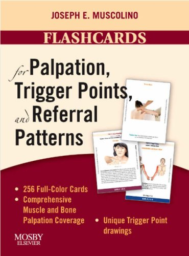Flashcards for Palpation, Trigger Points, and Referral Patterns, 1e