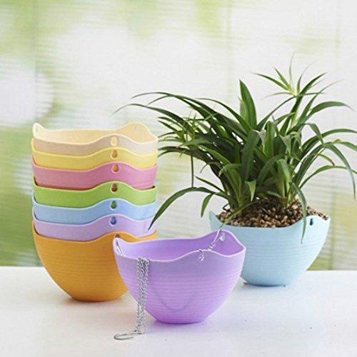 die Haken Wohnkultur Haken Xigeapg 6 Stueck haengende gesaetkoerbe Indoor//Outdoor haengenden Toepfe Pflanze Mischfarbe