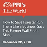 How to Save Forests? Run Them Like a Business, Says This Former Wall Street Man. | Carolyn Beeler