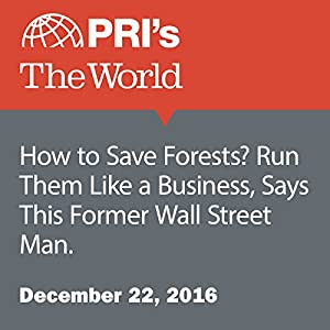 How to Save Forests? Run Them Like a Business, Says This Former Wall Street Man.