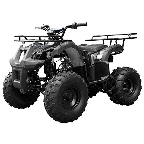 TaoTao-Atv-TForce-110cc-Big-Rugged-Wheels