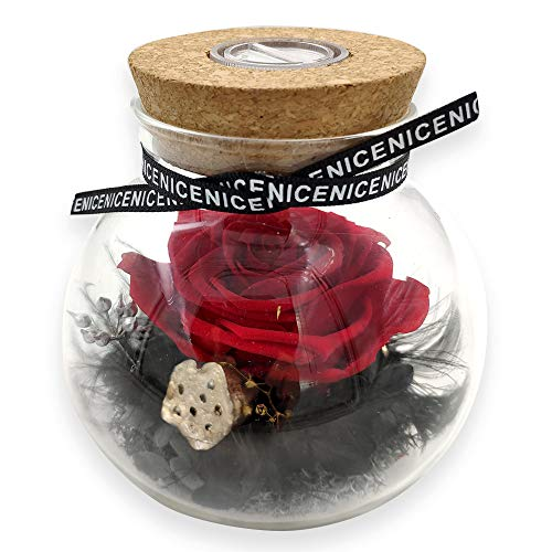 HISOPHIA Preserved Handmade Real Rose,Forever Immortal Flowers Never Withered Roses, Eernal Life Rose for Female, Gift for Weddding, Proposal,Birthday,Valentine's Day (red Rose in Glass Round) (Flowers For Valentines Day Other Than Roses)
