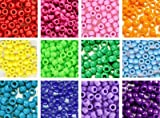 Rainbow Pony Beads Kit, 6x9mm, 12 Bags Variety Pack, 12 Colors - 300 grams (about 1200 beads), Gift Set