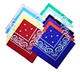 BS 12pcs Bandanas 2222 Inch 100% Cotton Novelty - Best Reviews Guide