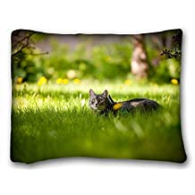 """Soft Pillow Case Cover ( Animals cat grasss lie down waiting ) Zippered Body Pillow Case Cover Size 20""""X26"""" suitable for California King-bed"""