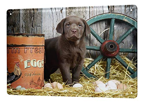LEotiE SINCE 2004 Tin Sign Breed Puppy Labrador chicken coop 8X12