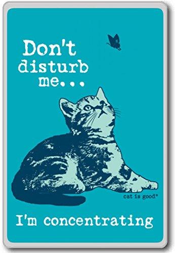 Don't Disturb Me – motivational inspirational quotes fridge magnet