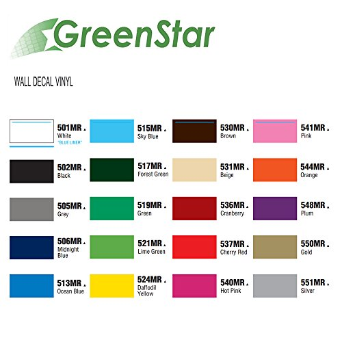 Greenstar 12 Quot X 12 Quot 20 Pack Self Adhesive Craft Vinyl