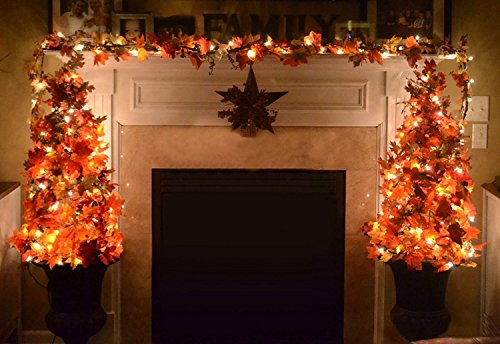 Thanksgiving Decorations Lighted Fall Garland, Thanksgiving Decor Halloween String Lights 8.2 Feet 20 LED, Thanksgiving Gift by Luditek (Image #6)
