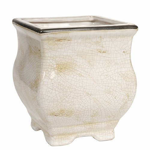 Hosley 5.7 High Cream Ceramic Topiary Planter. Ideal Gift for Wedding, Special Occasions, Spa, Flower Arrangements O3