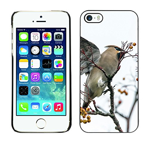 Premio Sottile Slim Cassa Custodia Case Cover Shell // F00009040 oiseau // Apple iPhone 5 5S 5G
