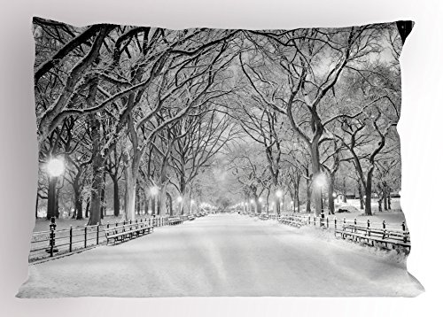 Ambesonne Winter Decor Pillow Sham by, View of Central Park in Winter Snowy Trees and the Walkway Digital Print, Decorative Standard Queen Size Printed Pillowcase, 30 X 20 Inches, Black and White (Walkway Standard)