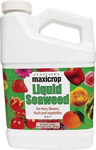 Maxicrop Liquid Seaweed, 1 qt