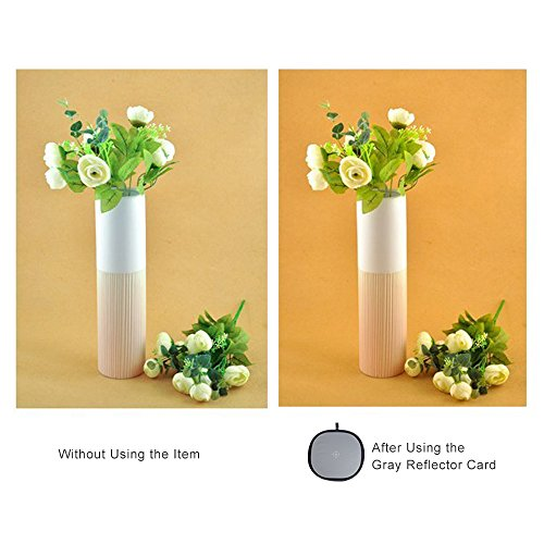 Andoer 60cm / 24'' Foldable Grey/White Balance 18% Grey Gray Reference Reflector Card with Carrying Bag by Andoe (Image #5)