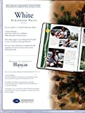 Creative Memories (8.5x11) 8 1/2 X 11 White Page Refill Pack, Archival Quality