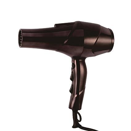 LXFMD Secador de Cabello Especial para hoteles de peluquería de Alta Potencia con secador de Cabello