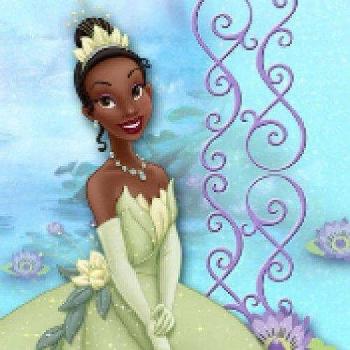 - Disney Princess and the Frog Dessert /Beverage Napkins