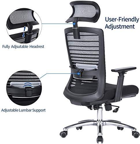 Schienale Sedia da ufficio ergonomica con supporto lombare ...