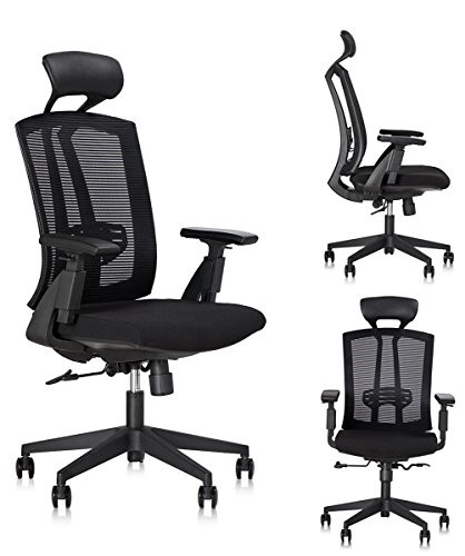 dr-office-high-back-ergonomic-chair-with-headrest-and-adjustable-armrest-black