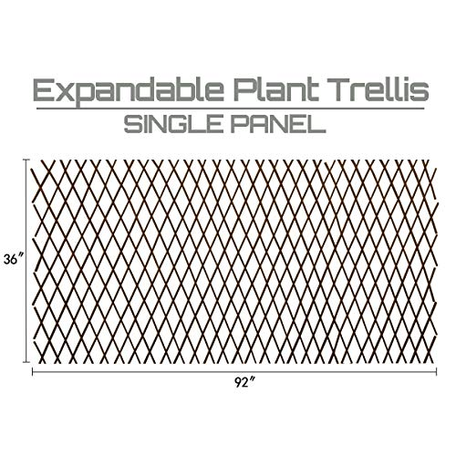Expandable Garden Trellis Plant Support Willow Lattice Fence Panel for Climbing Plants Vine Ivy Rose Cucumbers Clematis 36X92 Inch ()
