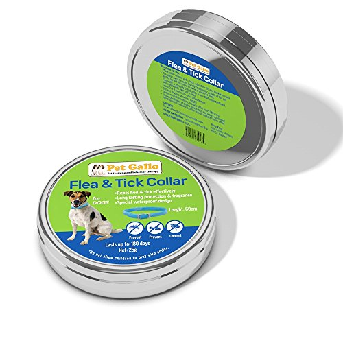 pet-gallo-flea-tick-dog-collar-protects-your-pet-for-6-months-fully-adjustable-water-proof-stops-bit