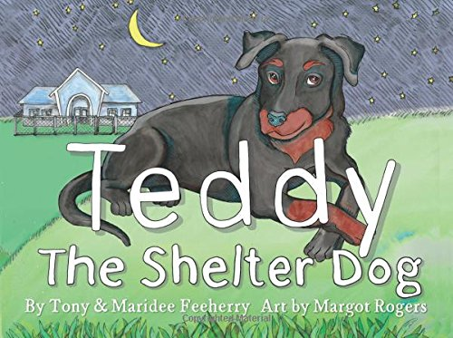 Teddy: The Shelter Dog
