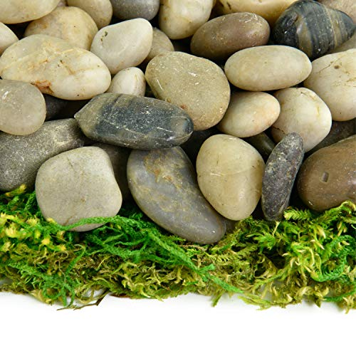 Boulder Fountain - Southwest Boulder & Stone Polished Pebbles | 5 Pounds of Natural, Decorative Stones | Hand-Picked, Premium Pebbles for Aquariums, Terrariums, Fish Tanks and Gardens | Mixed, 3/8 Inch - 5/8 Inch