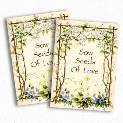 (Butterfly Garden Seed Packet Favors (F03))