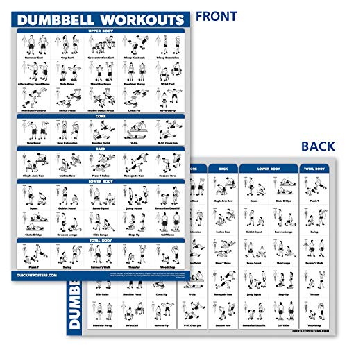 "Palace Learning Dumbbell Workout Exercise Poster - Free Weight Body Building Guide | Home Gym Chart | Laminated, 18"" x 27"""