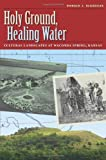 Holy Ground, Healing Water, Donald J. Blakeslee, 1603442111