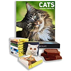 """Chocolate gift set """"CATS"""" (◕‿◕✿) Food gifts, present ideas, funny gift for all cat lovers! (Summer Prime)"""