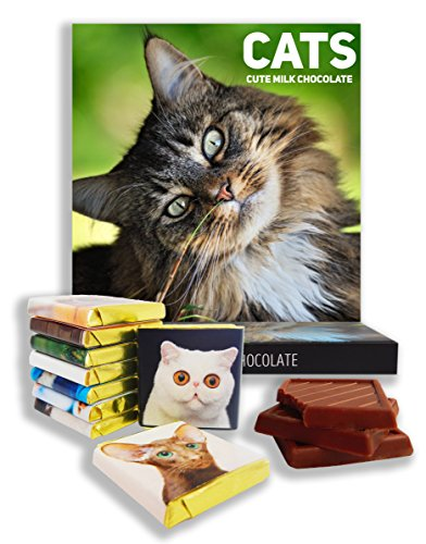 "Price comparison product image Chocolate gift set ""CATS"" () Food gifts, present ideas, funny gift for all cat lovers! (Summer Prime)"