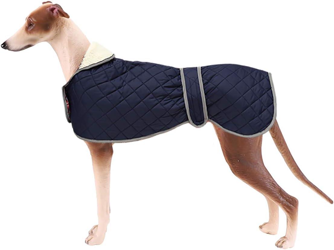 Geyecete Abrigo de galgo acolchado térmico cálido con agujero para arnés, abrigo de invierno para perro con forro polar cálido, ropa de perro al aire libre – Azul-XXL