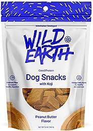 Wild Earth Clean Protein Dog Treats with superfood Koji