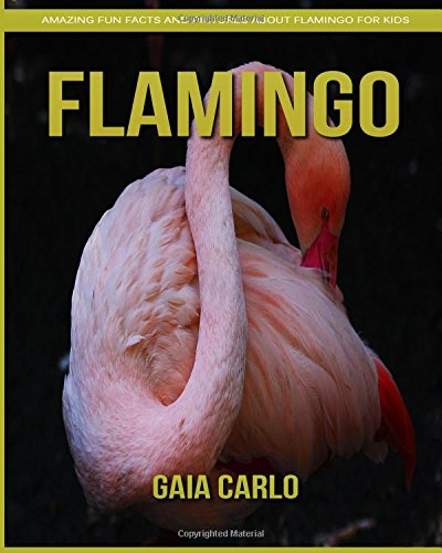Read Online Flamingo: Amazing Fun Facts and Pictures about Flamingo for Kids pdf epub