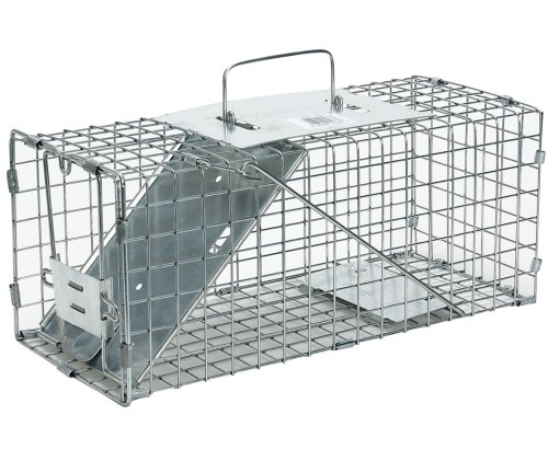 Havahart Small Professional Style One-Door Animal Trap for Squirrel, Rabbit, Skunk, and Mink - 1077