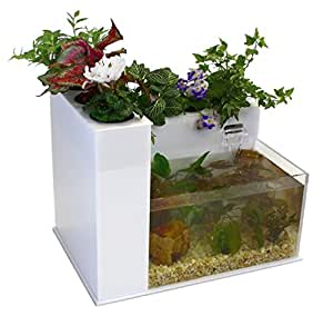 Fin to Flower Aquaponic Aquarium - Large System C (White)