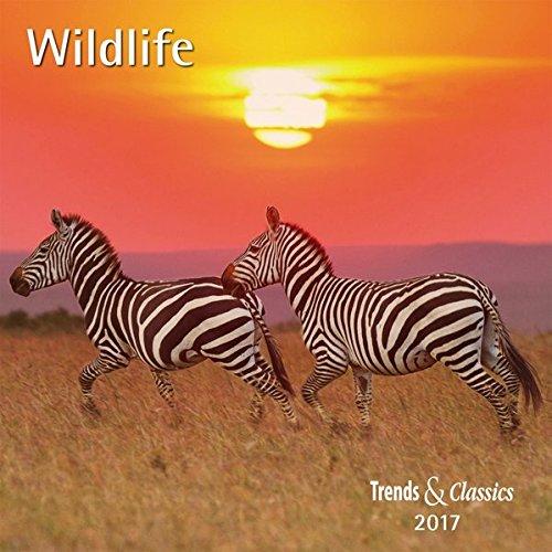 Wildlife 2017