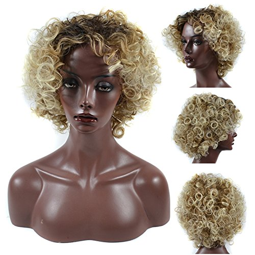Search : Pengma New Chic African American Kinky Curly Women Wigs for Black Women