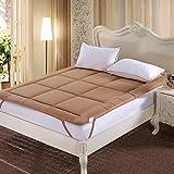 FDCVS The four seasons Folding Tatami mats Mattress, Floor Sleeping pad Comfortable Breathable Mattress-C 60x120cm(24x47inch)