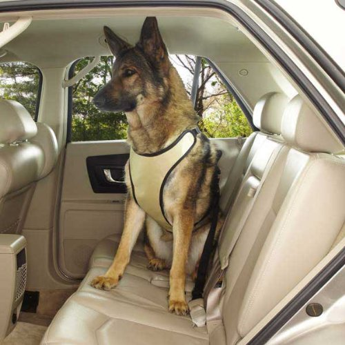 Guardian Gear Ride Right Comfort Car Harness for Pets, Large, Slate
