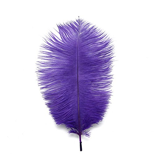 WAKEACE Ostrich Feathers 10-12inch/25-30CM 20pieces Wholesale Discount DIY Wedding Decoration Clothing Accessories -