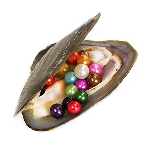 (1PC Monster Oyster Freshwater Cultured with 10 Mix Color Round Love Wish Pearls Inside 10 Colors (7-8mm), Valentines Mothers Day Birthday Gifts Pearl Wedding Party (total 10 Pearls))